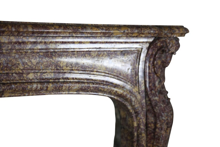Regency 19th Century Brocatelle Marble French Interior Antique Fireplace Surround For Sale