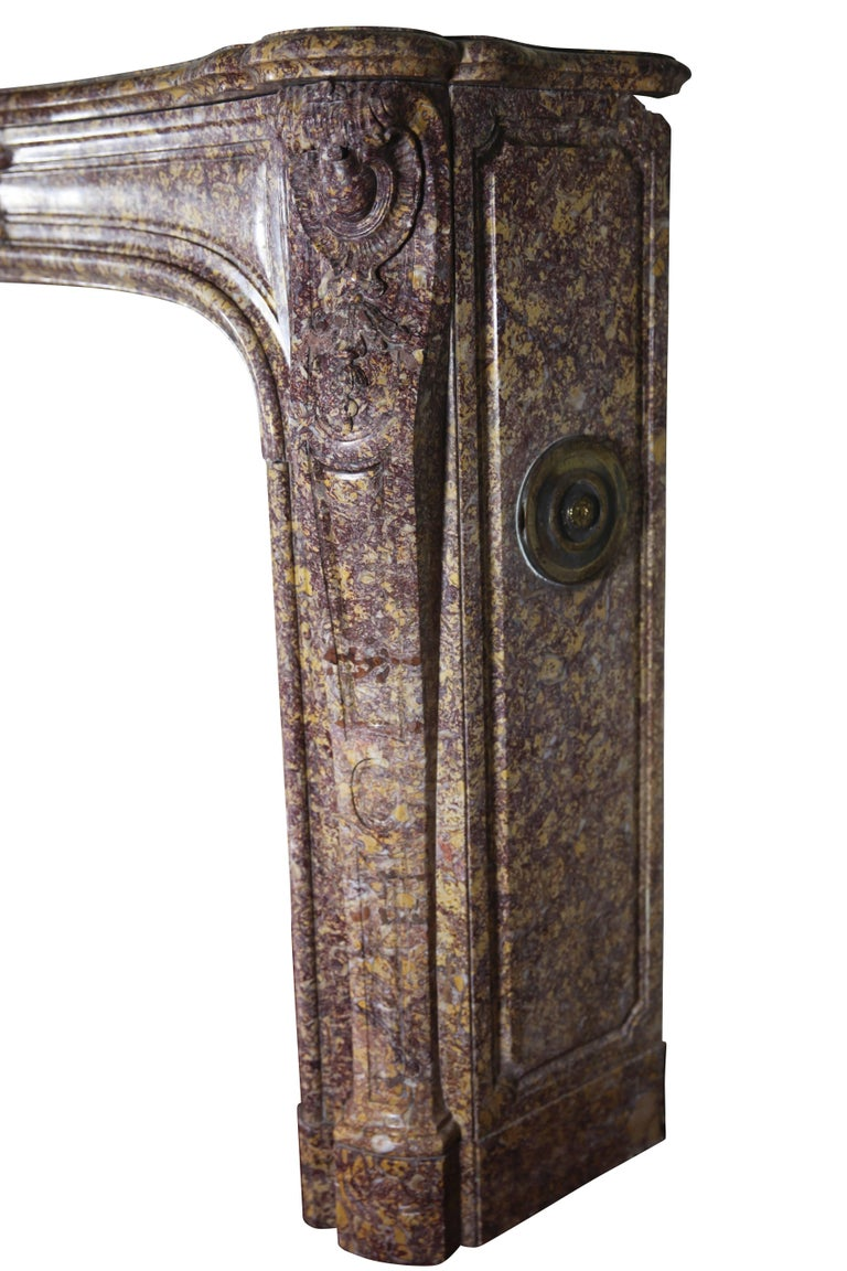 19th Century Brocatelle Marble French Interior Antique Fireplace Surround For Sale 2