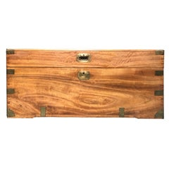 19th Century Campaign Style Camphor Wood Trunk