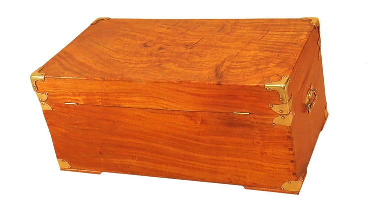 English 19th Century Camphor Wood Military Campaign Trunk For Sale