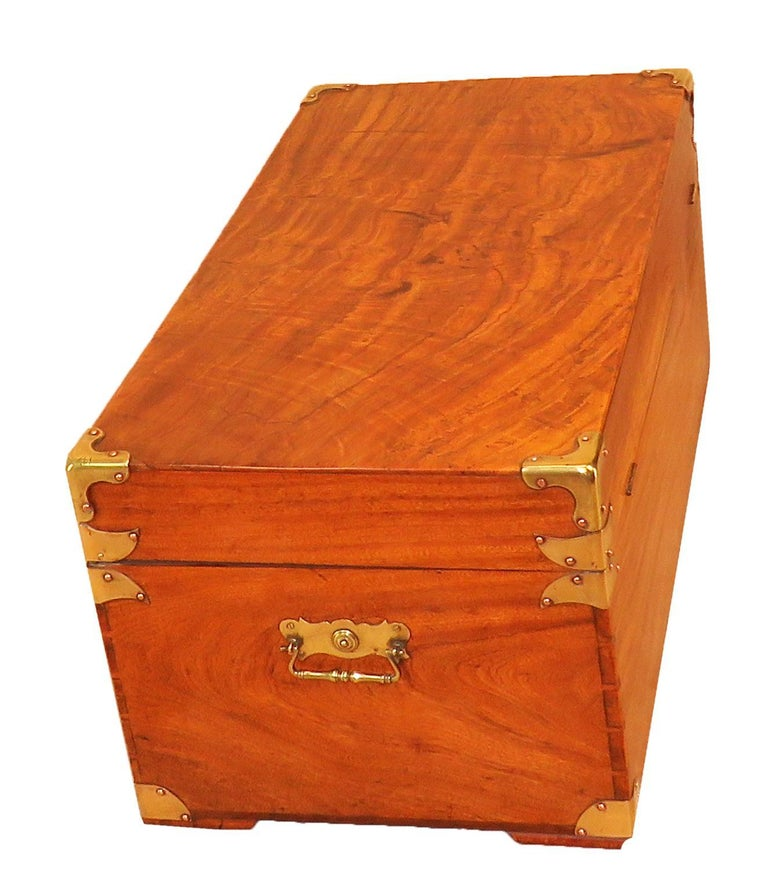 19th Century Camphor Wood Military Campaign Trunk For Sale 3
