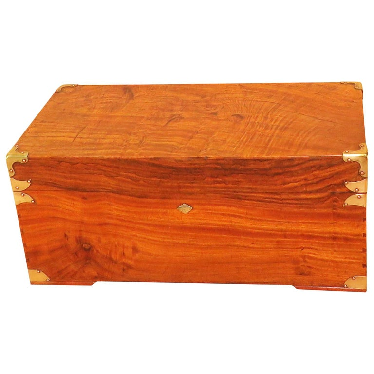 19th Century Camphor Wood Military Campaign Trunk