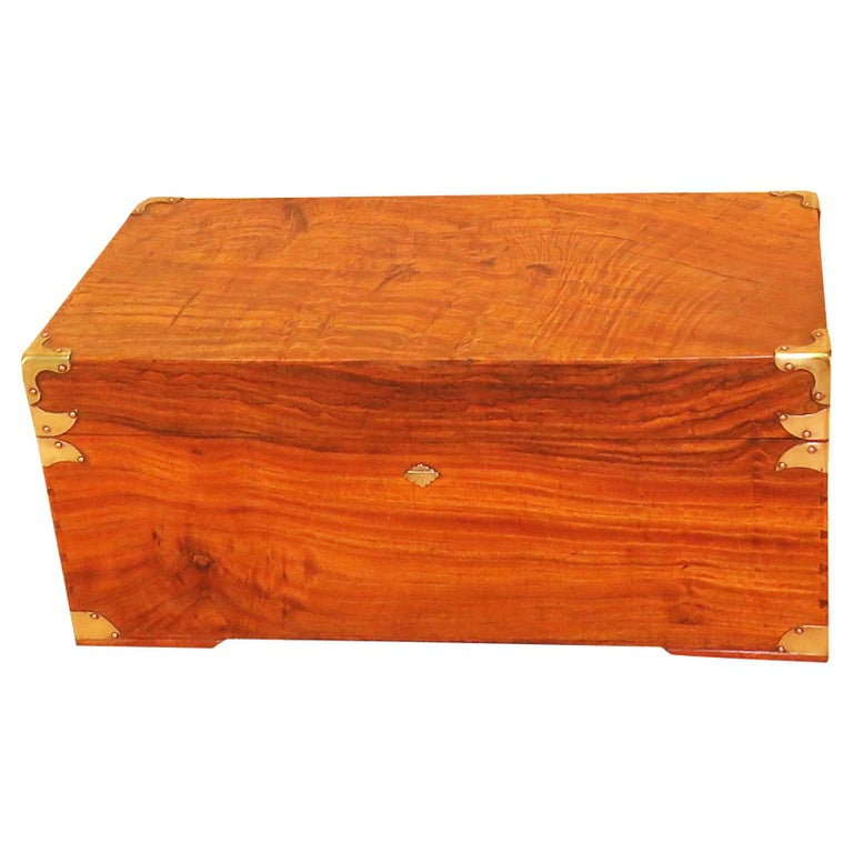 19th Century Camphor Wood Military Campaign Trunk For Sale
