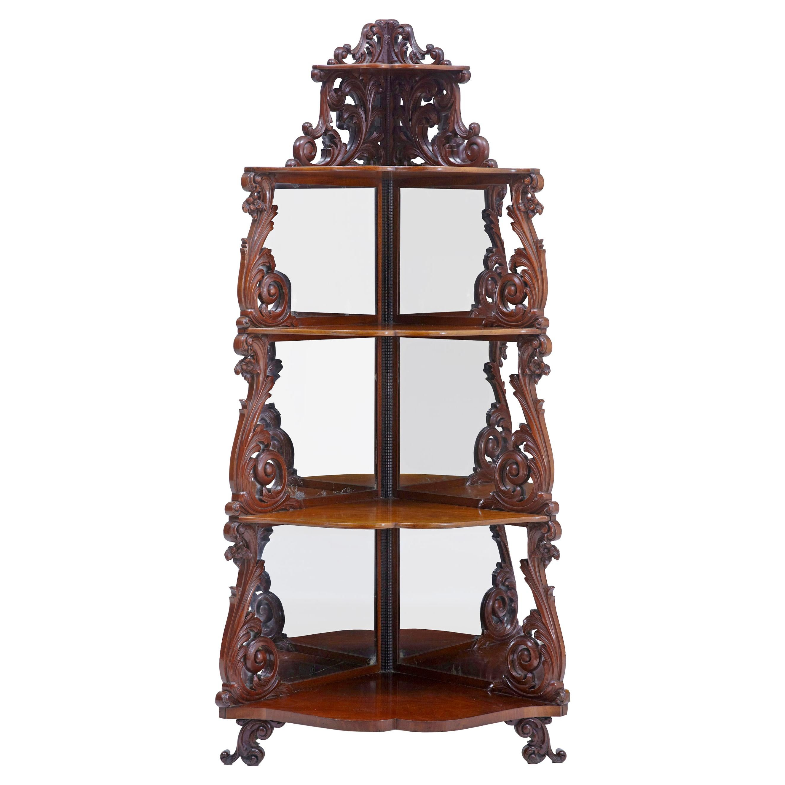 19th Century Carved Mahogany Victorian Mirrored Whatnot