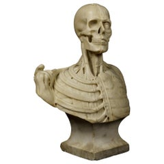19th Century Carved Marble Vanitas Bust