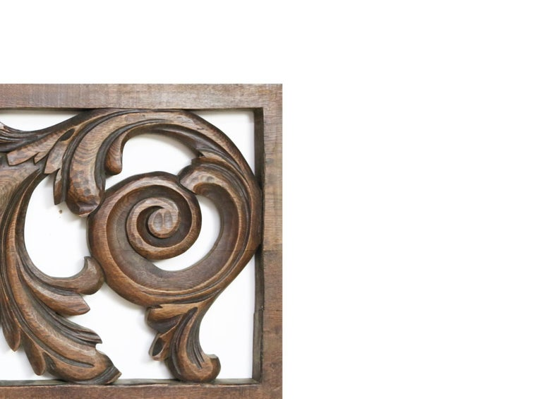 European 19th Century Carved Oak Panel For Sale