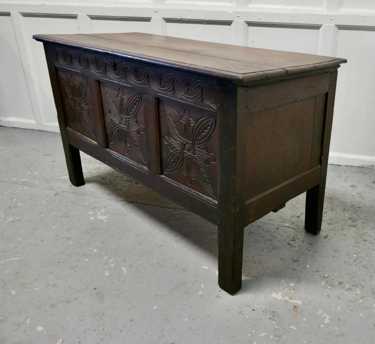 Gothic 19th Century Carved Paneled Oak Coffer For Sale