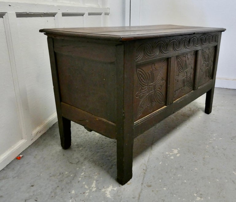 19th Century Carved Paneled Oak Coffer In Good Condition For Sale In Chillerton, Isle of Wight