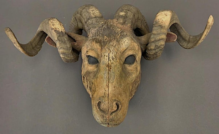 Folk Art carved wooden ram's head with real ram's horns. The carving measuring 22