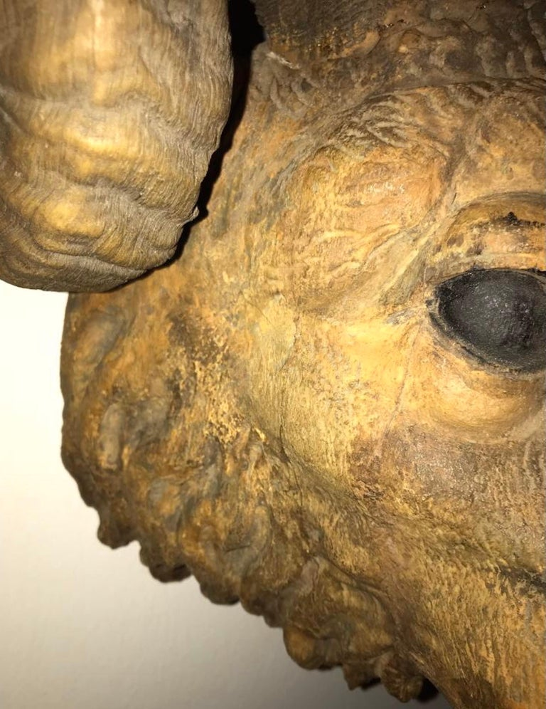 American 19th Century Carved Wood Ram Sculpture
