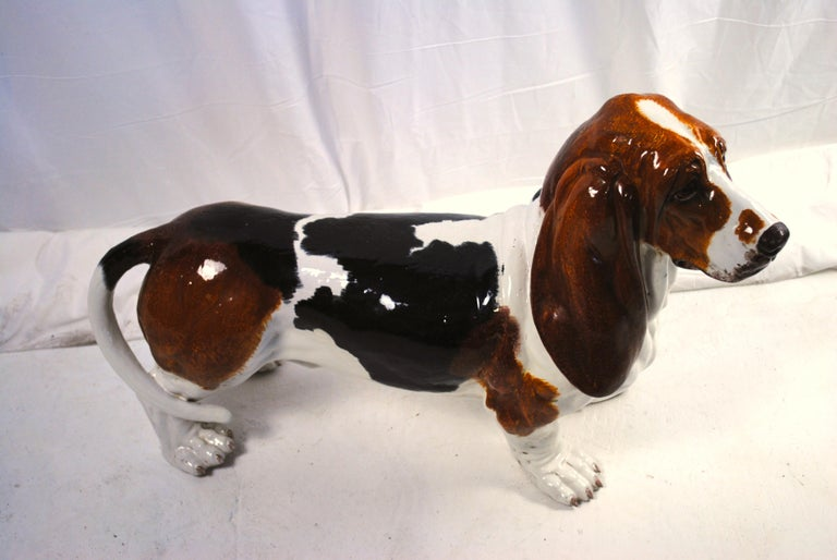 A ceramic figure of a life-size basset hound, dated 1907s. A rear and adorable depiction of a basset hound. Unmarked but very probably made by Montebello in Italy.  Very good glaze and casting. The stance and expression is very lifelike and the