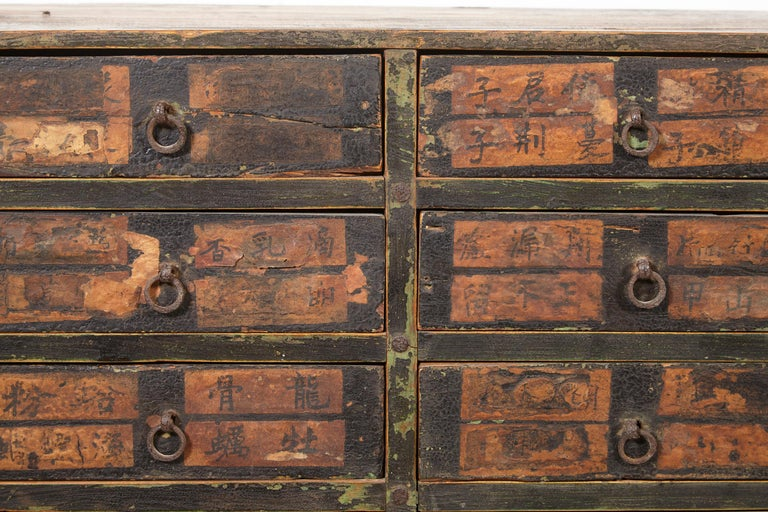 19th Century Chinese Apothecary Cabinet For Sale 7
