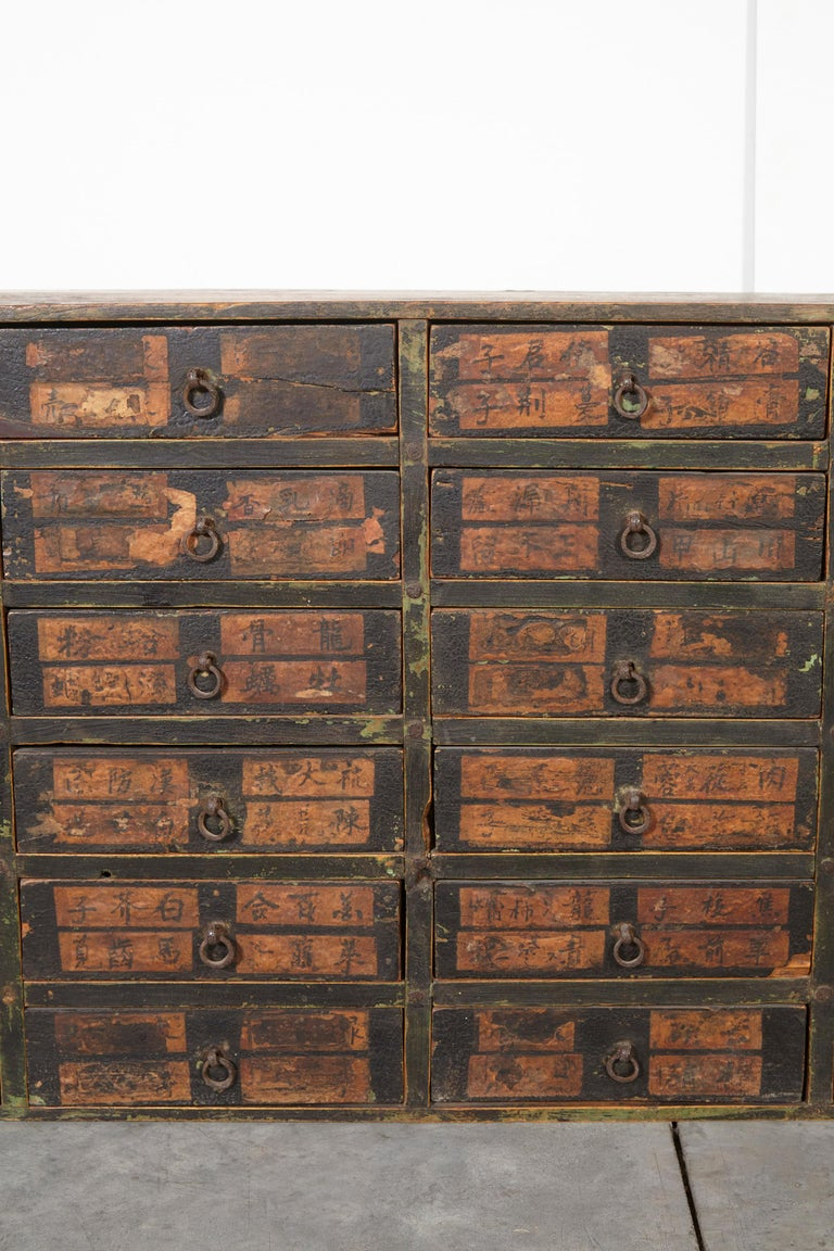19th Century Chinese Apothecary Cabinet For Sale 2