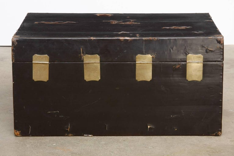 Wood 19th Century Chinese Black Lacquered Pigskin Trunk For Sale