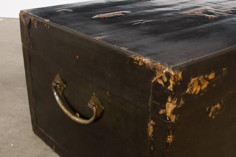 19th Century Chinese Black Lacquered Pigskin Trunk For Sale 2