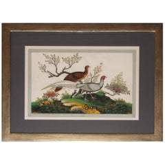 19th Century Chinese Export Watercolor Painting of Pheasants
