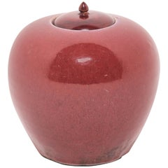 19th Century Chinese Peach Blossom Melon Ginger Jar with Wooden Lid