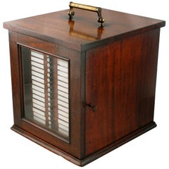 19th Century Collector's Cabinet