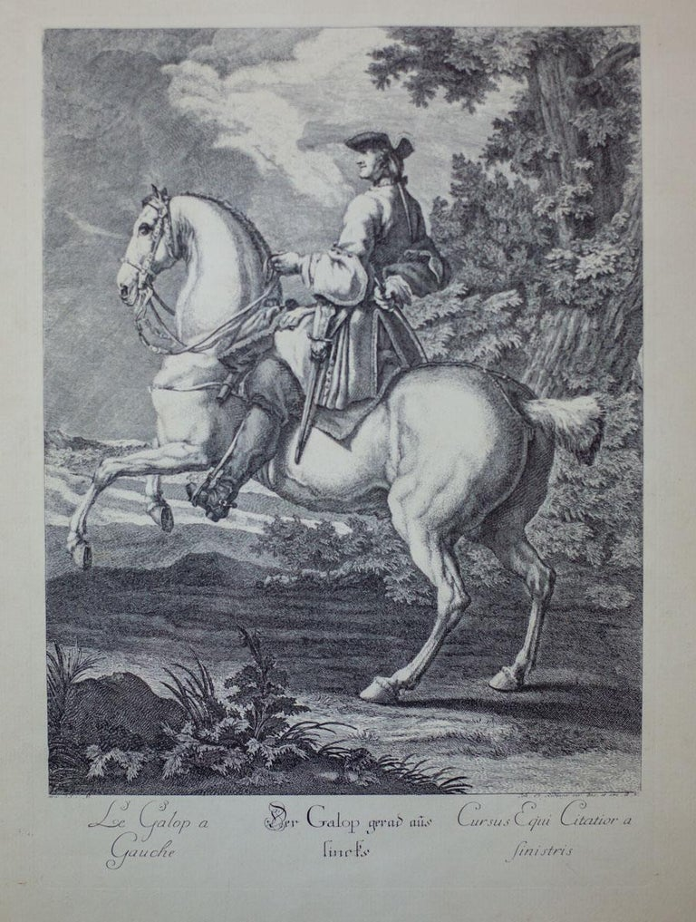 German 19th Century Copperplate Engraving by J.E. Ridinger For Sale