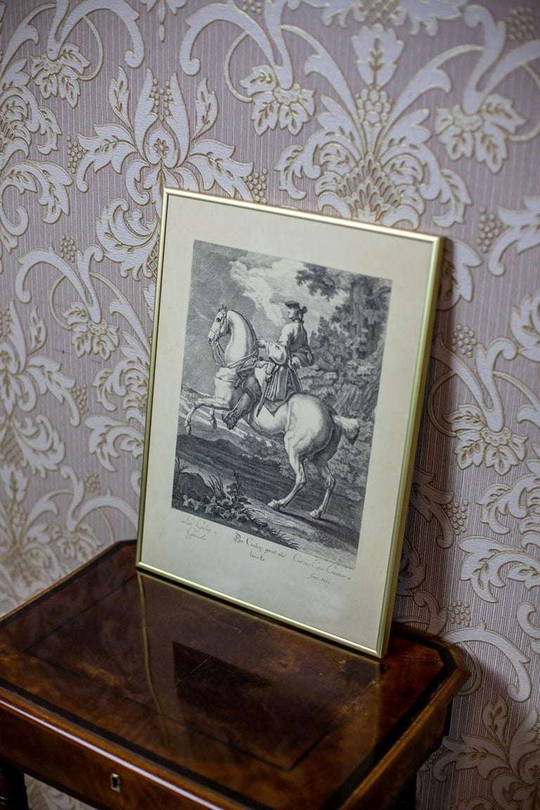 19th Century Copperplate Engraving by J.E. Ridinger In Good Condition For Sale In Opole, PL