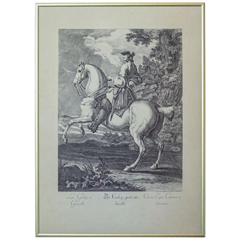 19th Century Copperplate Engraving by J.E. Ridinger For Sale