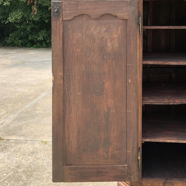 19th Century Country French Wardrobe, Cabinet For Sale 4