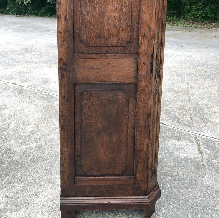 19th Century Country French Wardrobe, Cabinet For Sale 5