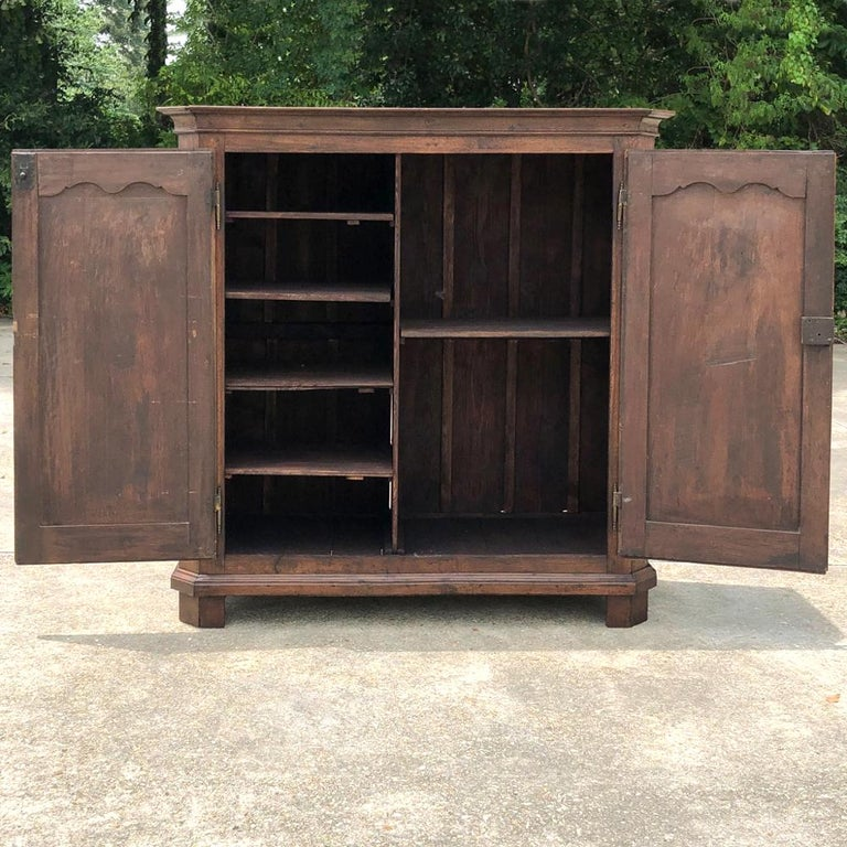 19th Century Country French Wardrobe, Cabinet For Sale 2
