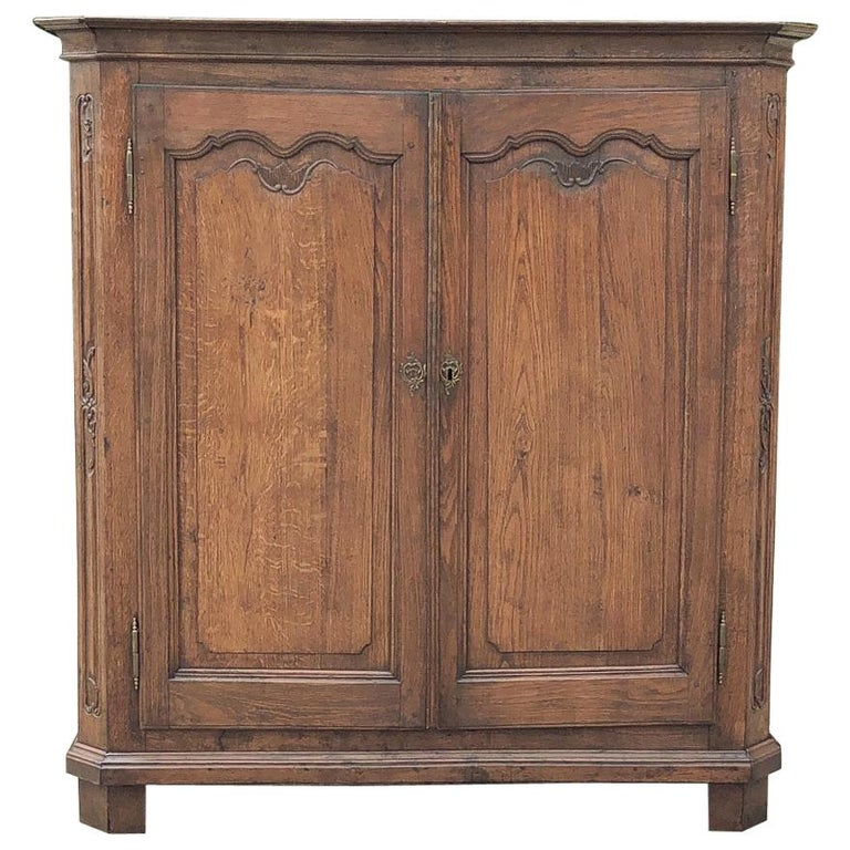 19th Century Country French Wardrobe, Cabinet For Sale