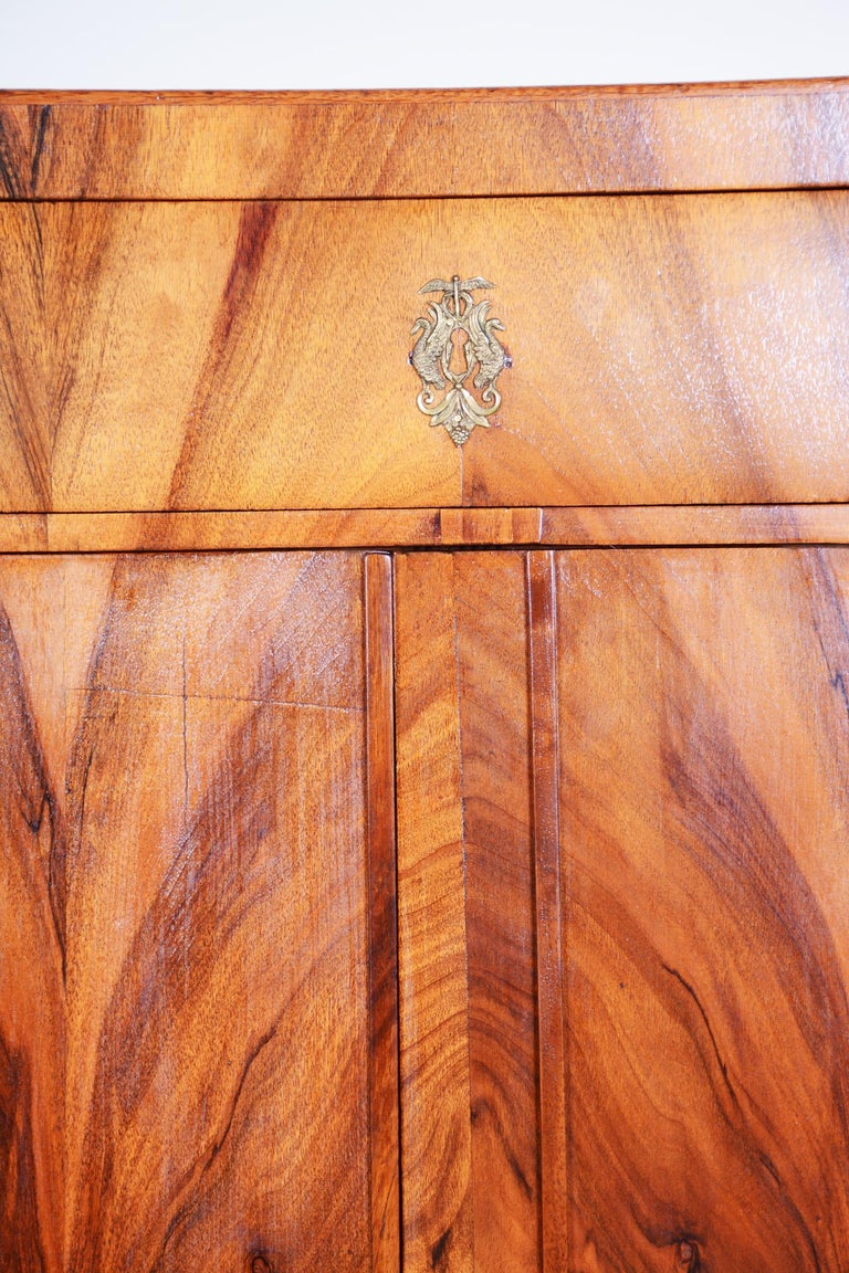 19th Century Czech One Door Biedermeier Walnut Wardrobe Cabinet, Restored, 1830s For Sale 1
