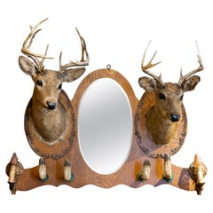 19th Century Double Deer Taxidermy Rack and Mirror