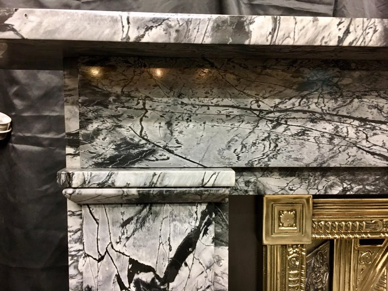 19th Century Early Victorian Grey Bardigilo Marble Fireplace Surround For Sale 1