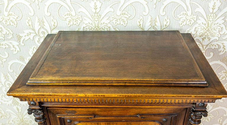 19th Century Eclectic Columnar Cabinet For Sale 8