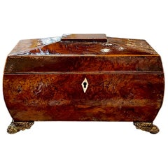 19th Century English Burl Wood Tea Caddy