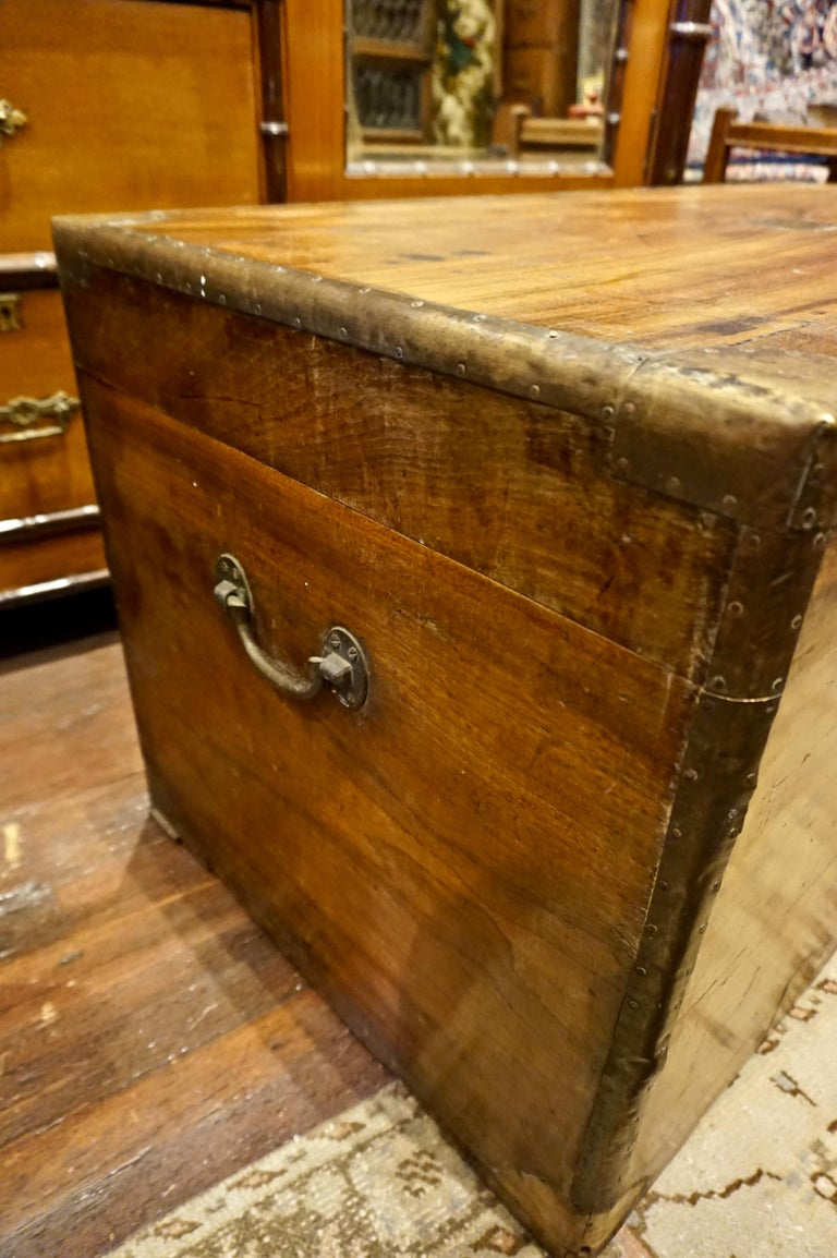 19th Century English Camphor Campaign Chest For Sale 7