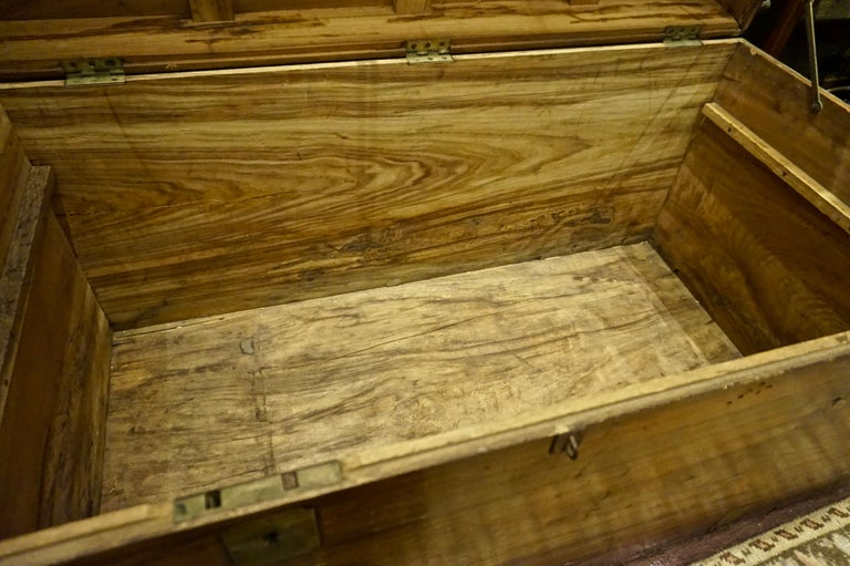 19th Century English Camphor Campaign Chest For Sale 12