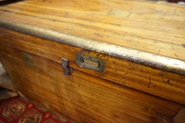 19th century English Camphor chest.