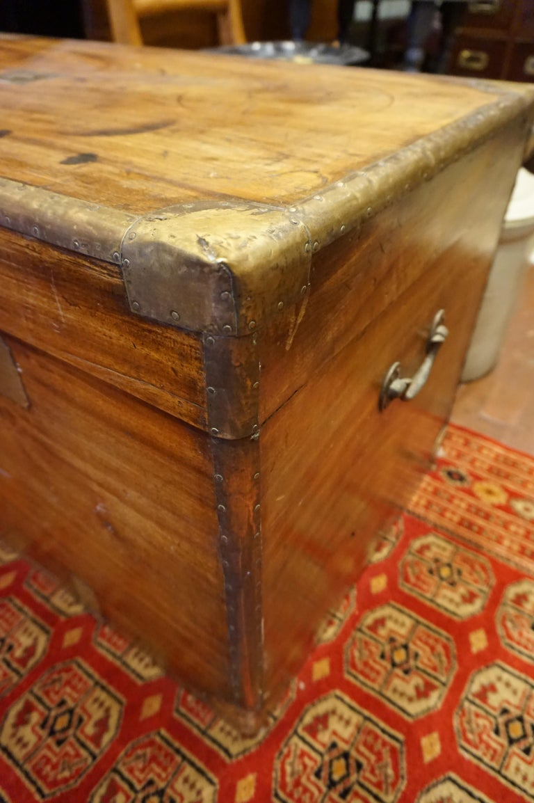 19th Century English Camphor Campaign Chest In Good Condition For Sale In Vancouver, British Columbia