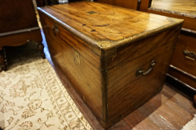 19th Century English Camphor Campaign Chest For Sale 2