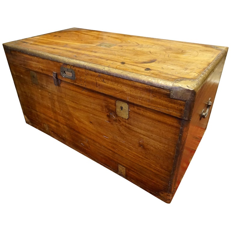 19th Century English Camphor Campaign Chest For Sale