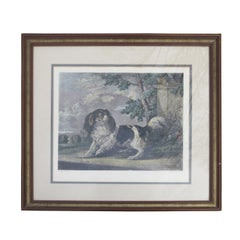 19th Century English Engraving of King Charles Spaniel by Charles Hunt