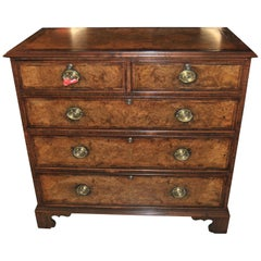 19th Century English Kashmir Walnut Chest of Drawers