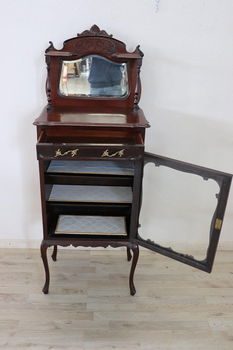19th Century English Mahogany Carved Antique Vitrine or Display Cabinet In Excellent Condition For Sale In Bosco Marengo, IT