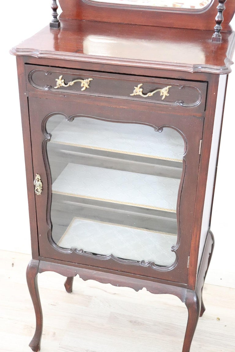 19th Century English Mahogany Carved Antique Vitrine or Display Cabinet For Sale 3
