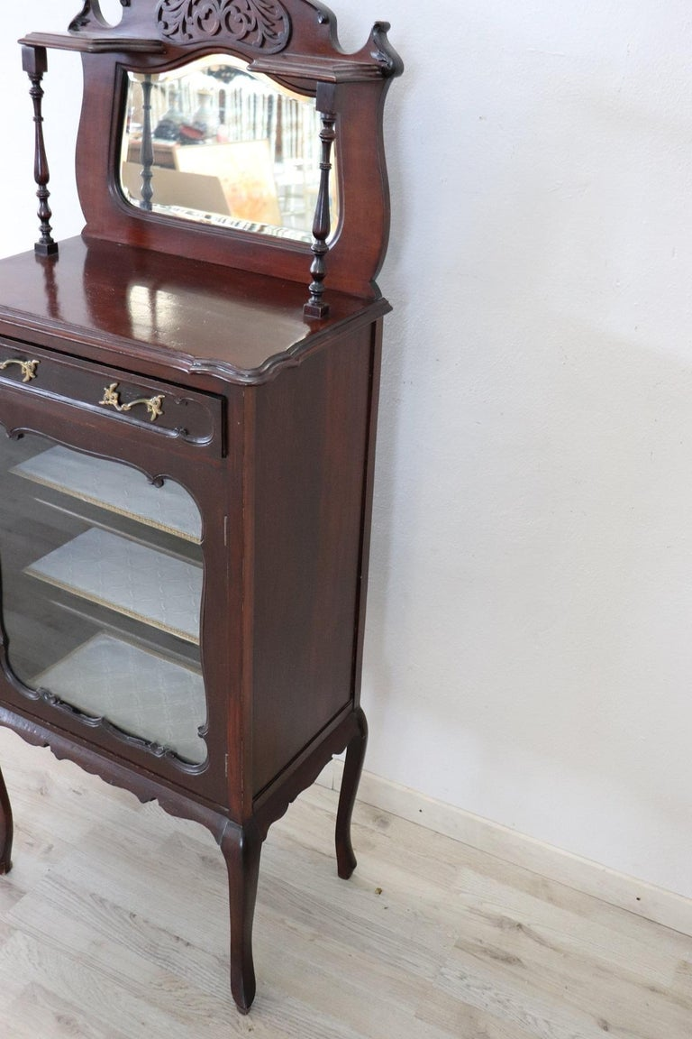 19th Century English Mahogany Carved Antique Vitrine or Display Cabinet For Sale 4