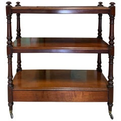 19th Century English Mahogany Trolley or Etagere
