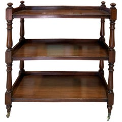 19th Century English Mahogany Trolley or Étagère