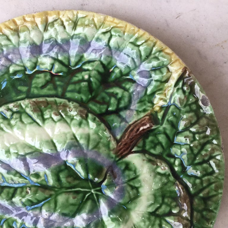 Victorian 19th Century English Majolica Begonia Plate For Sale