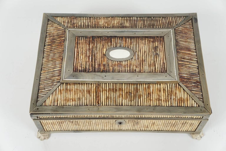 19th Century English Regency Period Horn, Quill and Bone Dressing Box In Good Condition For Sale In Hudson, NY