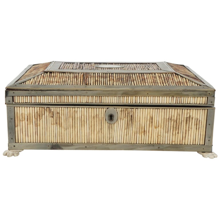19th Century English Regency Period Horn, Quill and Bone Dressing Box For Sale